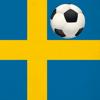 Fotboll Allsvenskan Sverige