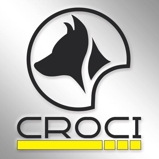 Croci S p A  by WebLink Srl - Varese