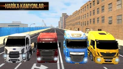 Euro Truck Driver 2018 iphone ekran görüntüleri