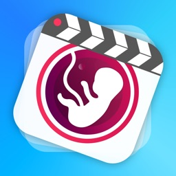 BellyMotion - Make Videos of Your Pregnancy