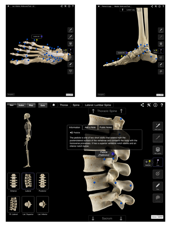 Skeleton System Pro IIIのおすすめ画像4