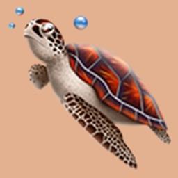 奔跑吧小龟