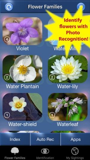 SUNBIRD Nature Box USA - identify birds, trees, flowers, mushrooms + ...