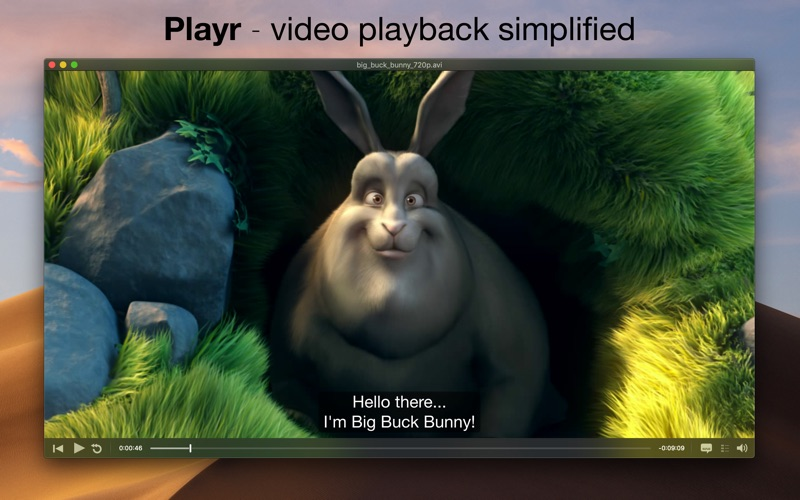 Playr Screenshots