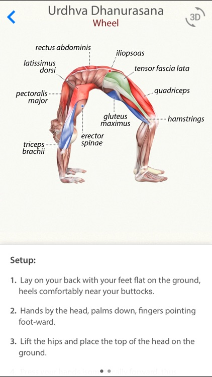 3D Yoga Anatomy screenshot-0