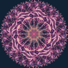 Mandala Maker: symmetry doodle Icon
