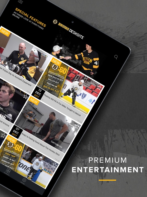 Bruins DeskSite screenshot-3