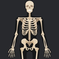 Codes for Anatomy Quiz: Science Trivia Hack