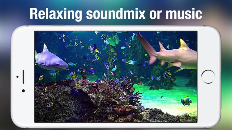 Aquarium Live HD screenshot-4