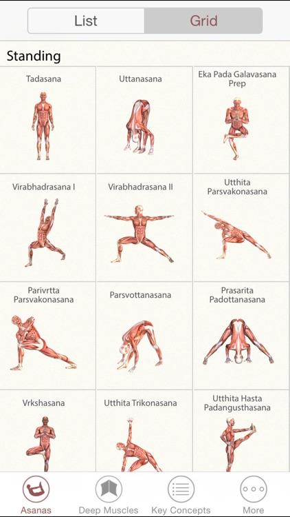 3D Yoga Anatomy screenshot-3