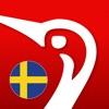Swedish Danish Dictionary - Gyldendal
