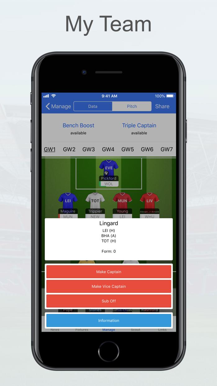 Fantasy Football Manager, Lite Screenshot