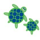 HubbardSwim icon