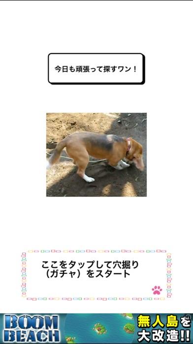 わんこ天気〜天気予報&可愛い犬の写真〜スクリーンショット2