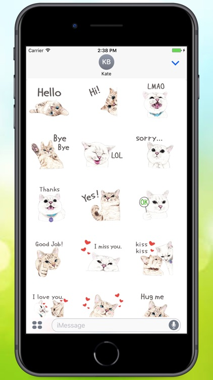 Text Cats Stickers