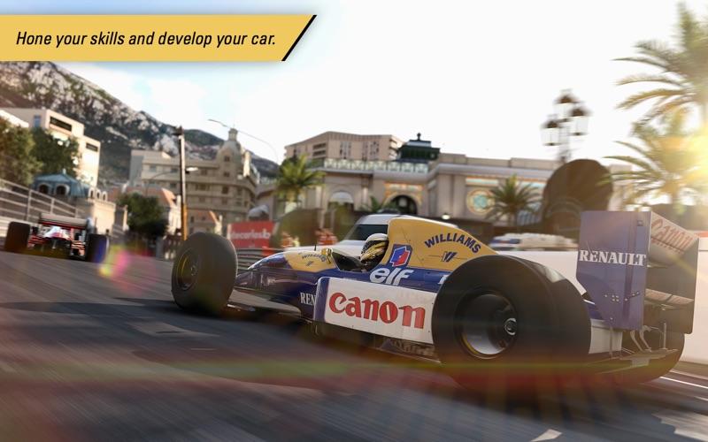 F1™ 2017 screenshot 1