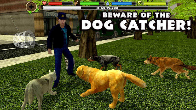 Stray Dog Simulator screenshot-4