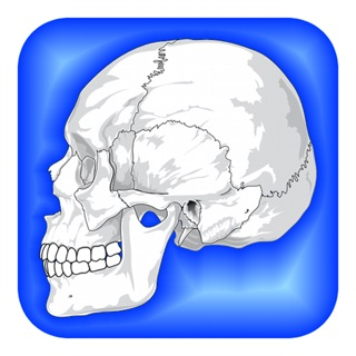 Best Riddles & Brain Teasers! on the App Store