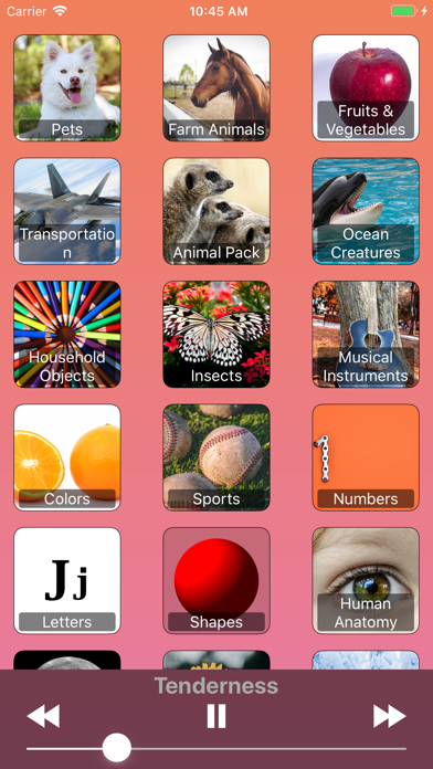 Animals For Kids! And More! screenshot 2