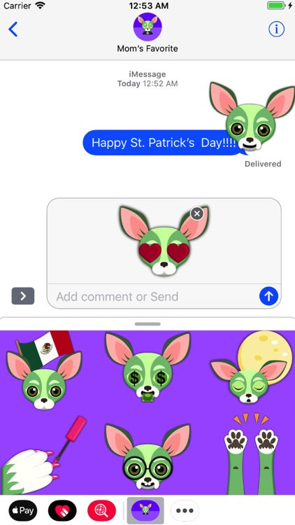 Saint Patrick's Day Chihuahua screenshot-1