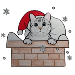 Cute Christmas Cat Sticker