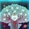 ツミキボシ - iPhoneアプリ