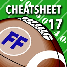 Fantasy Football Cheatsheet 17