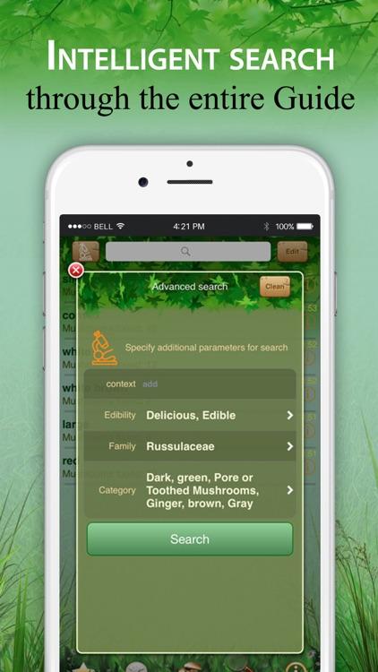 Mushroom Identifier and Guide