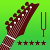 Stimmgerät für E-Gitarre Pro