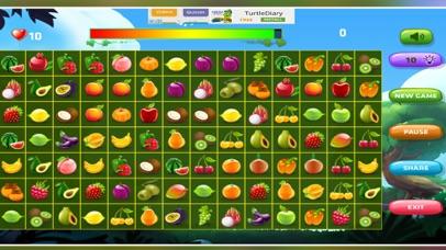Fruit Pair Matching