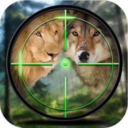 Forest Animal Hunter