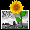 iSplash Colors - Farben oder Neueinfärben Photo Effect Editor