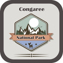 National Park In Congaree