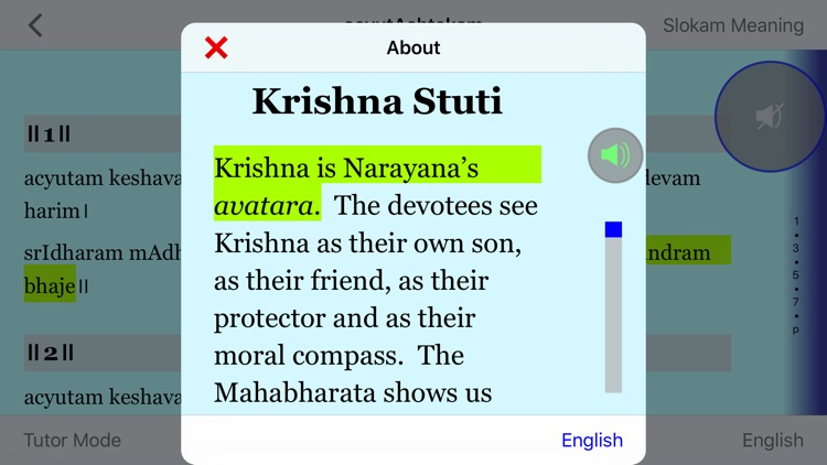 Krishna Stuti screenshot-4