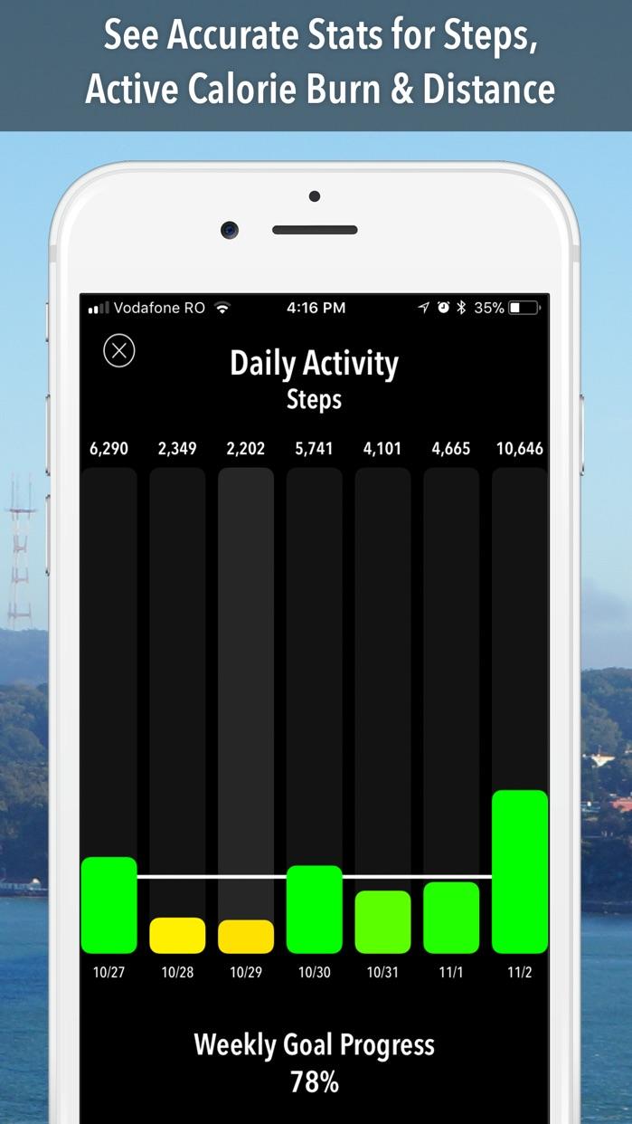 ActivityTracker Pedometer Screenshot