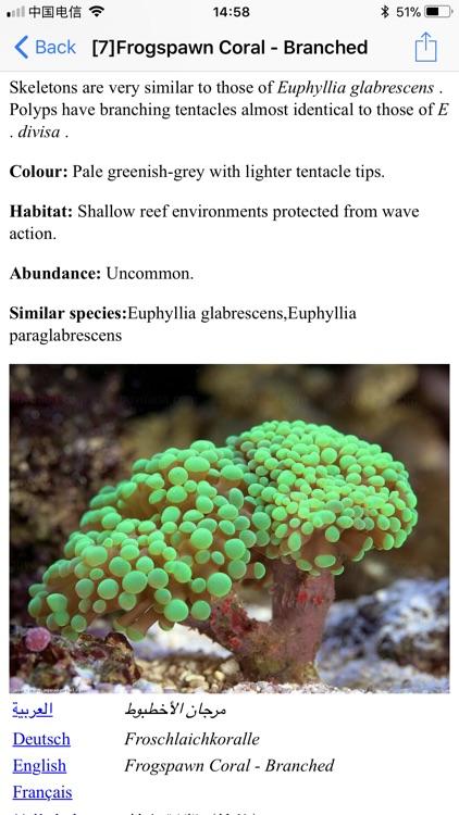 Coral Reefs Bible