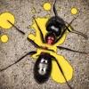 天天打蚂蚁: 杀死蚂蚁