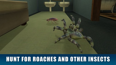 House Spider Survival Simulator 3D screenshot two