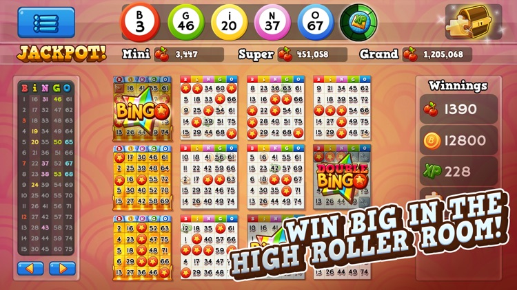 Bingo Pop screenshot-0