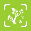 植物识别-认识花草识别植物