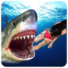 Activities of Angry Shark Attack Simulator