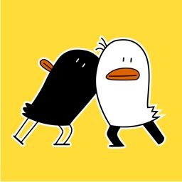 Funny Chicken and Bird