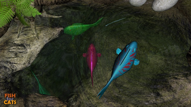 Fish for Cats: 3D fishing game for cats screenshot-3