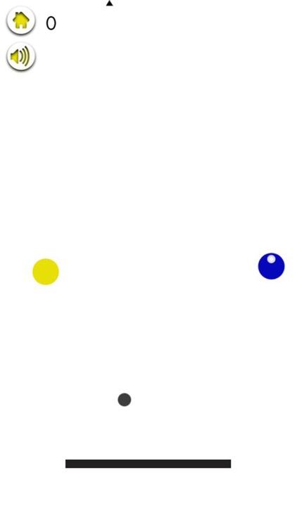 Zookky Ball