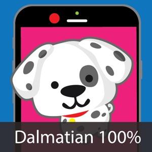 Dog Identify-Breed Identifier download