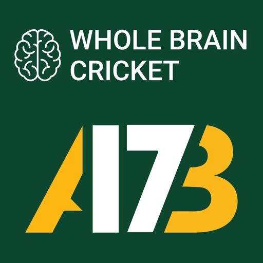 AB de Villiers Whole Brain Cricket