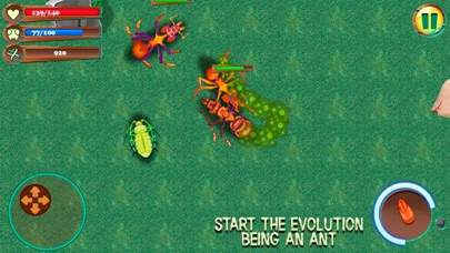 Ant City Colony Evolution screenshot one
