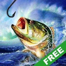 Activities of Fishing Champion Lite