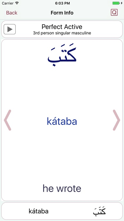 CAVE Arabic Verb Conjugator screenshot-4