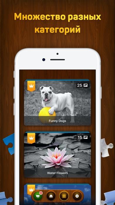 Пазлы и головоломки Скриншоты6